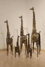 Giraffes 2015