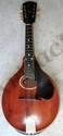 The Gibson Mandolin