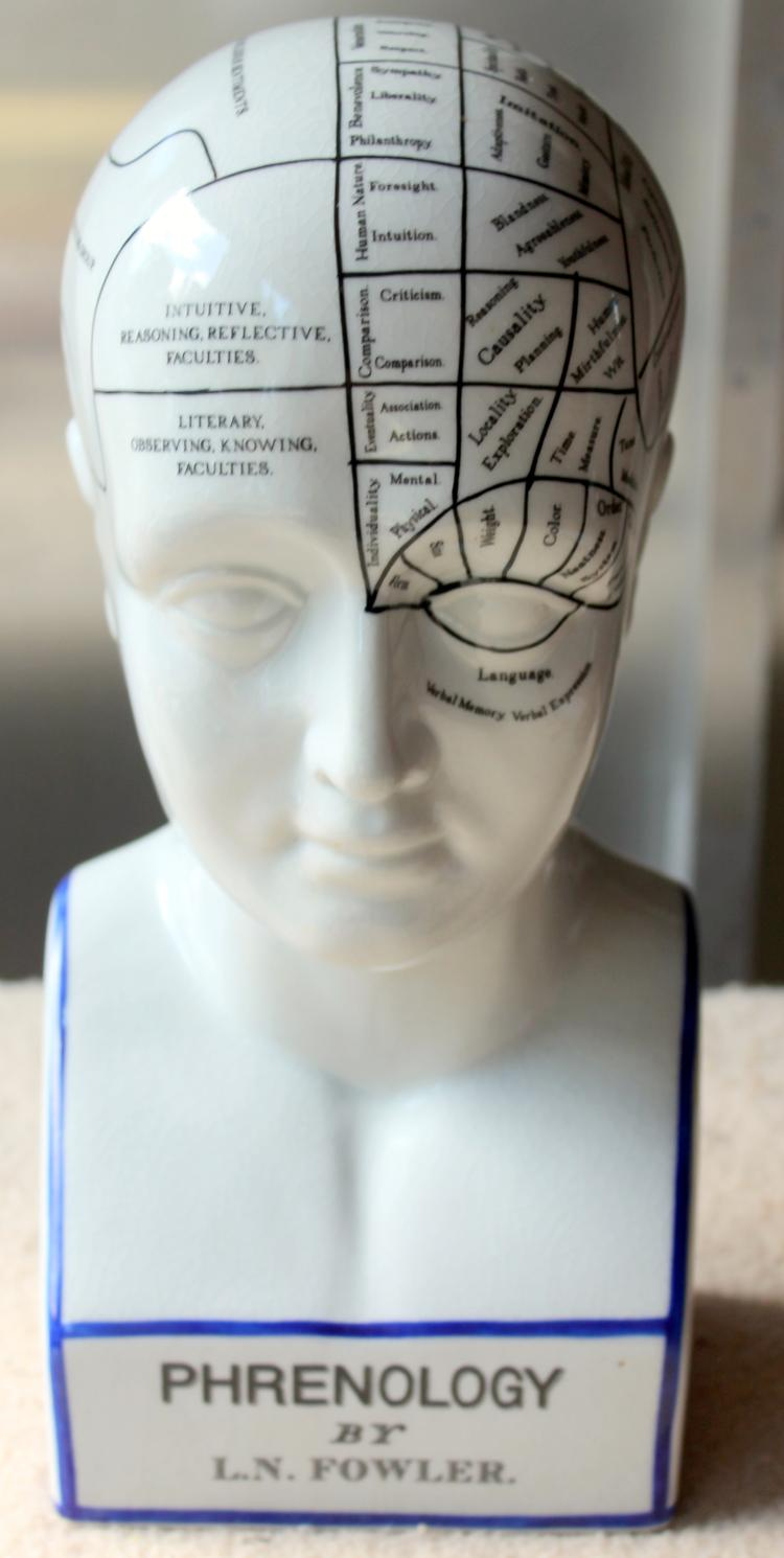 Phrenology Head By L. N. Fowler