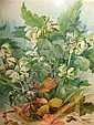 MARIE HENSLEY (c.1856-1911) Strawberry blossom and, Marie Hensley, Click for value