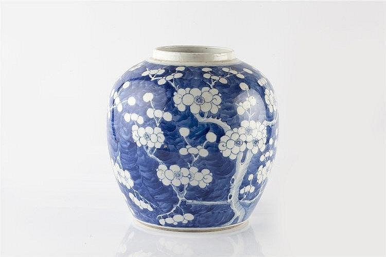 A Chinese blue and white porcelain ginger jar 19th Century decorated w