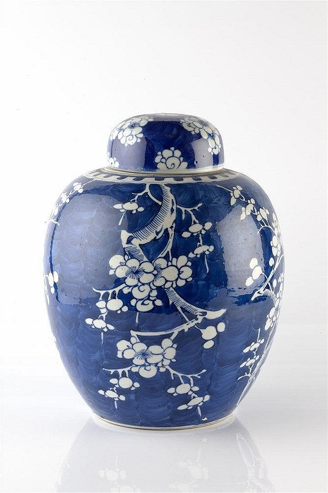 A Chinese blue and white porcelain ginger jar and cover 19th Century d