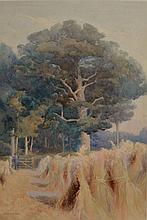 Mary Georgina Barton (Irish, 1861-1949) The