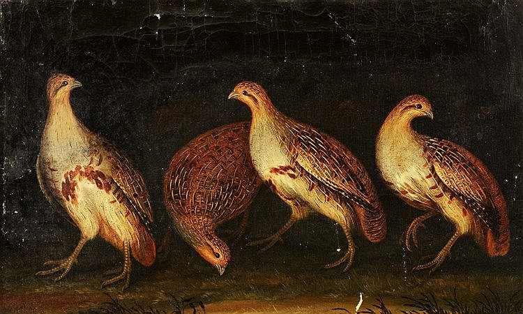 19TH CENTURY ENGLISH SCHOOL A group of four partridges, oils on canvas