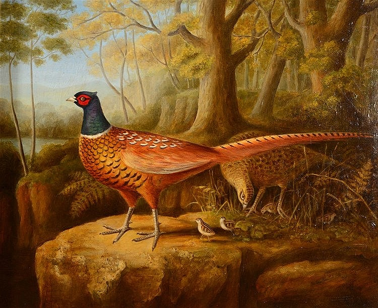 TIM BROWN (20TH CENTURY) A family of pheasants in a wooded clearing, s