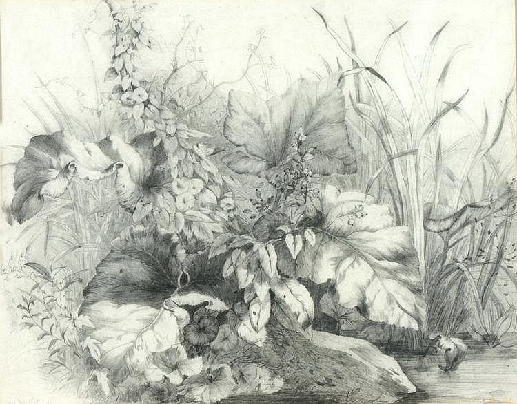 WILLIAM DAVIS (1812-1873) Wild flowers beside a