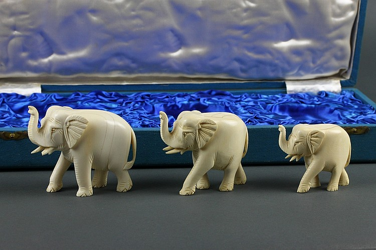 Chinese Carved Ivory Elephants in Original Box