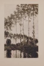 Claude Monet : Les Peupliers au Bord de l'Epte (Poplars on the banks of the Epte)