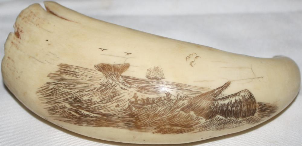 EARLY 20TH CENTURY SCRIMSHAWED WHALE'S TOOTH,