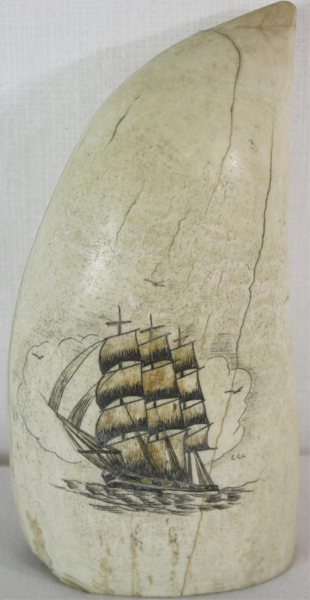 20TH CENTURY SCRIMSHAWED WHALES TOOTH. POLYCHROME