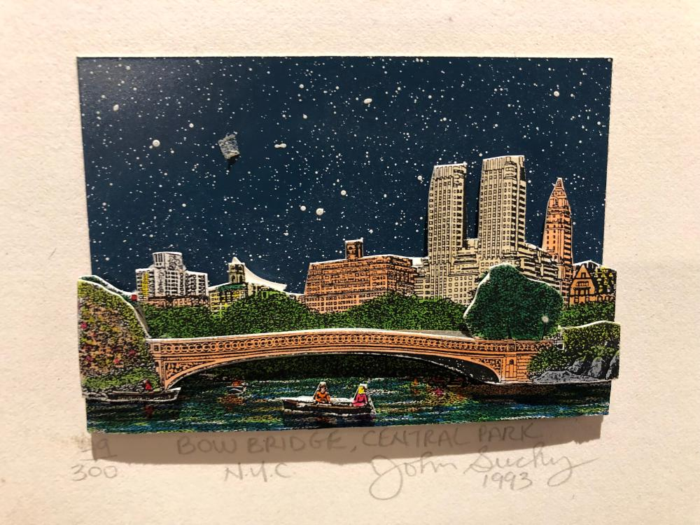 John Suchy, Central Park 2D bridge