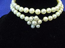 Strand of Pearls With Pearl Clasp