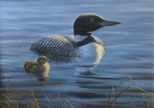 Original oil painting by Ghislain Caron - Common Loon and his chick