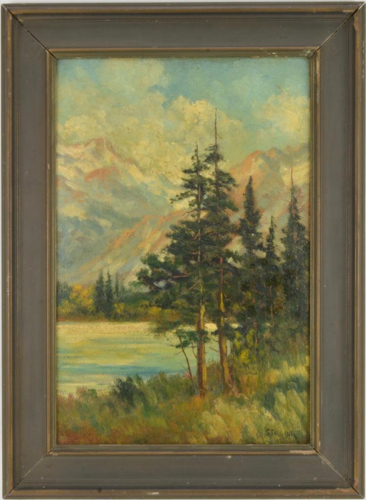 Dave Stirling Oil Painting Spruce Trees Rocky Mt National Park