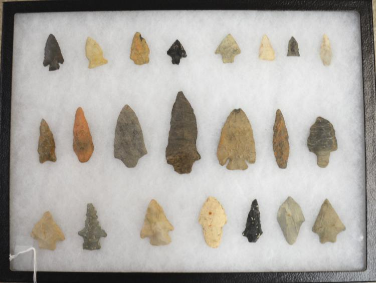 North Carolina Indian Head Collection