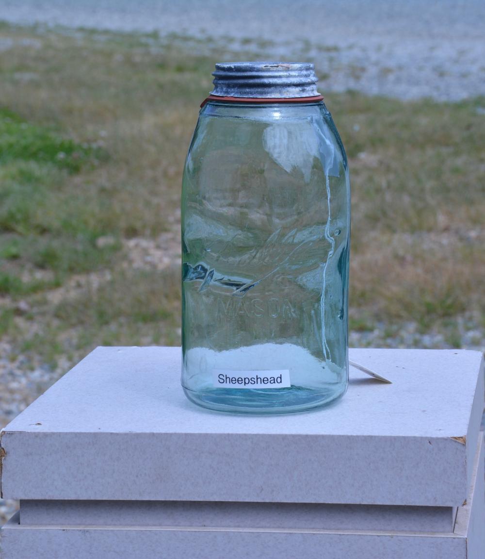 Antique Balll Mason Sheepshead Half Gallon Fruit Jar
