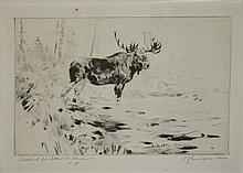 Carl Rungius (Am 1869-1959) drypoint etching