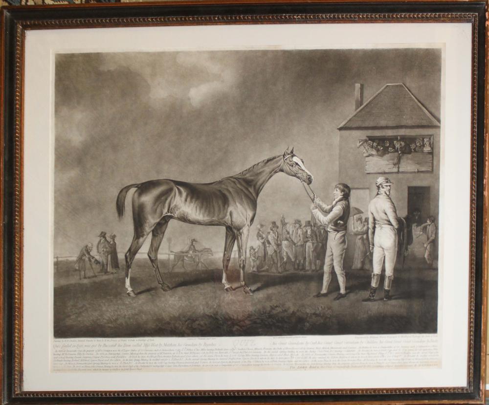 "1808 R Ackerman London Engraving ""QUIZ"""
