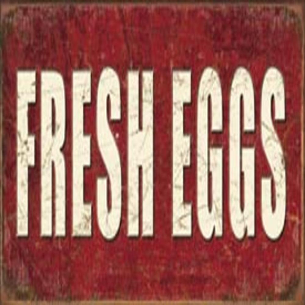 """Lot 107: Fresh Eggs 16""""W x 8.5""""H SKU # 1807"""