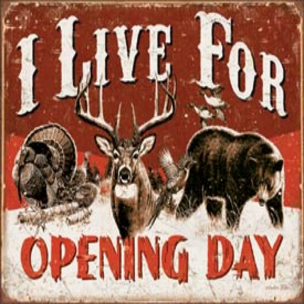 """Live For Opening Day  16""""Wx12.5""""H  SKU # 1816"""