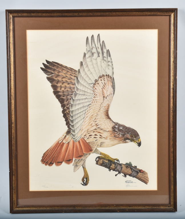 H. CONNER SIGNED HAWK PRINT