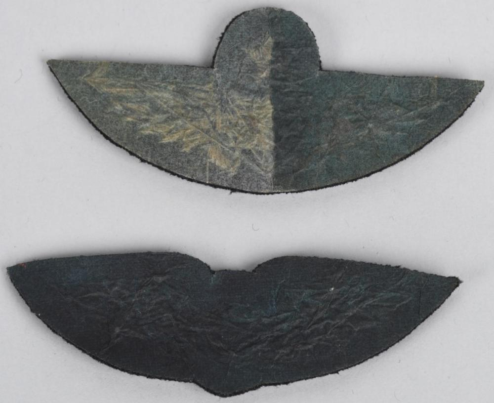 WWI US EARLY ARMY AIR CORPS WINGS INSIGNIA PHOTO
