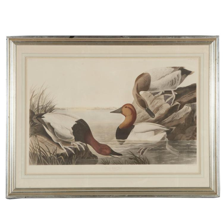 After John James Audubon, print