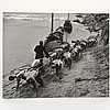 Dimitri Kessel (1902-1995, American), photograph, Dmitri Kessel, Click for value