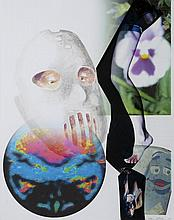 Tony OURSLER (né en 1957)   Untitled, 2010