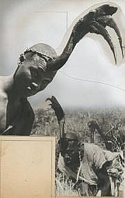 Roger PARRY (1905-1977) Cameroun: types avec