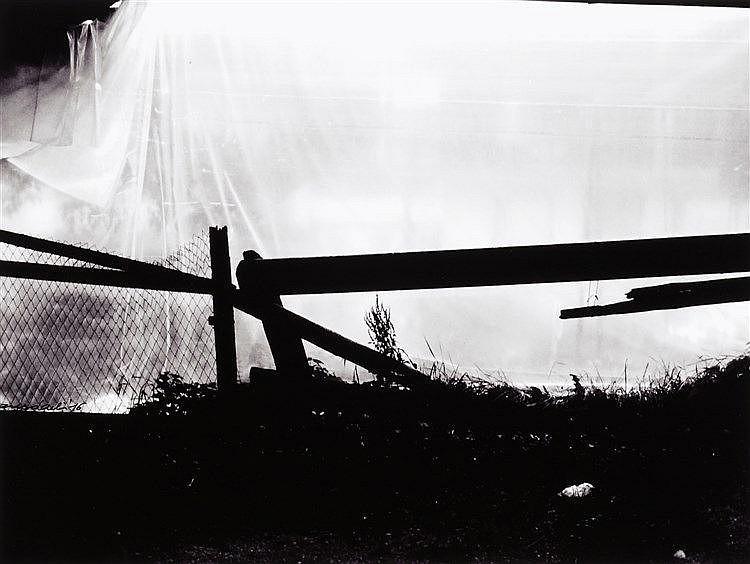 Enzo Carli (1949)