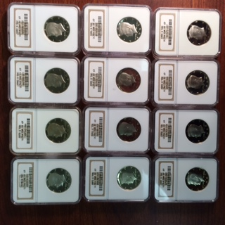 A dozen consecutively dated NGC Certified Proof Kennedy Half Dollars (1978-1990) but for 1982