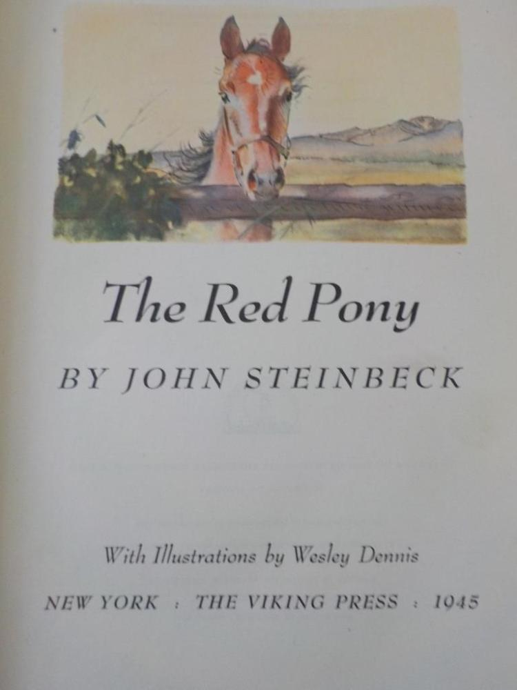 the red pony by john steinbeck essays The red pony: biography: john steinbeck, free study guides and book notes including comprehensive chapter analysis, complete summary analysis, author biography.
