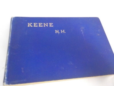 1895 50 Illustrations of Keene NH Booklet