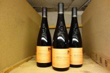 12 bouteilles  SAUMUR-CHAMPIGNY  Les Roches Neuves,  T. Germain  2006
