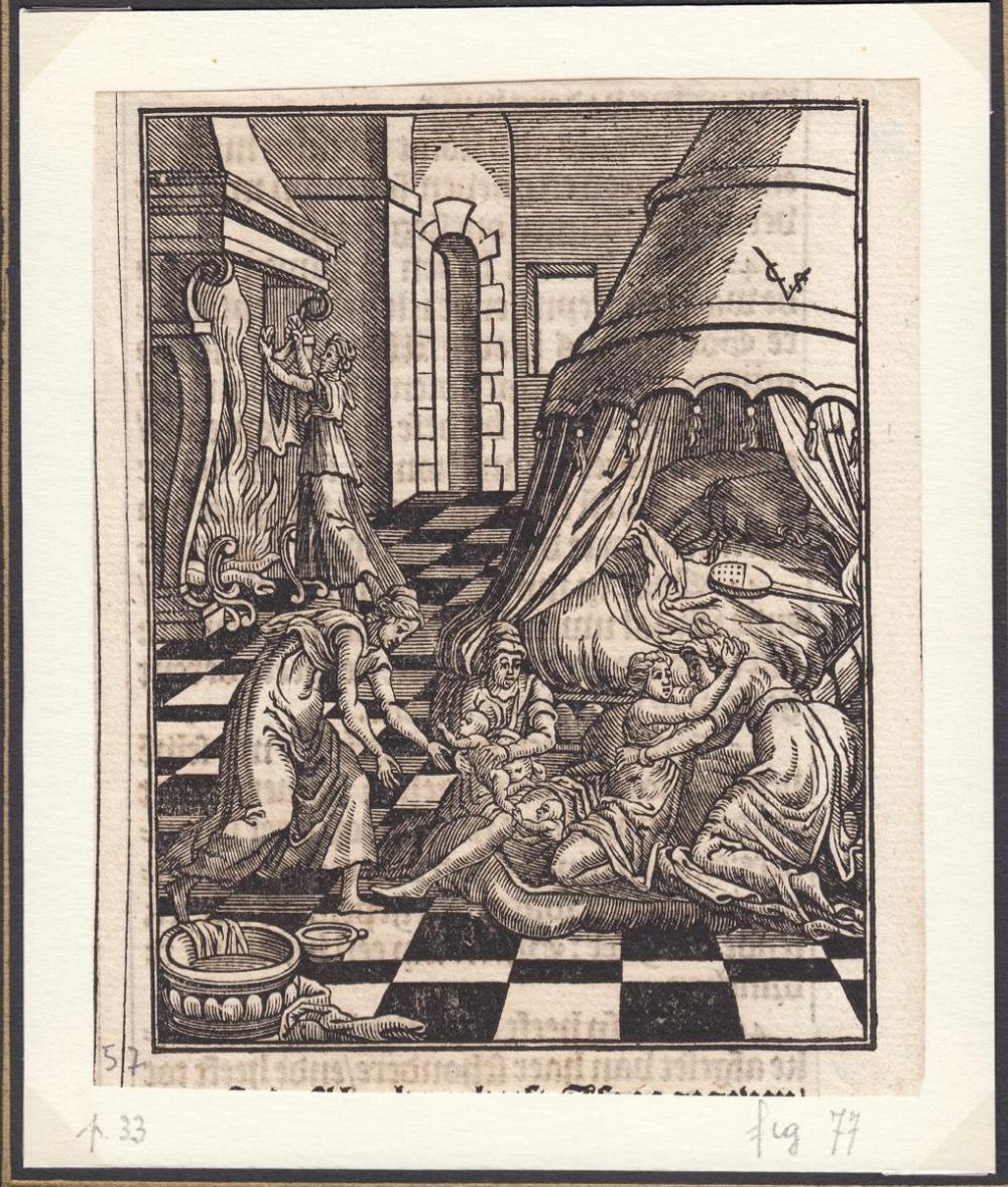 Christoffel van SICHEM - Collection de 105 bois issus d