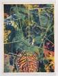 ALBERTO CASTRO LEÑERO a) Jungla. 79/100, b) Doomsday, 1986. 73/100 c) Samotracia. 89/100, Firmadas. Litografías. PIEZAS: 3.