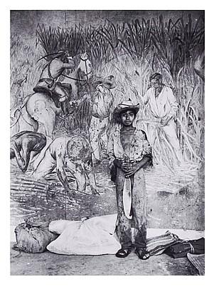 HÉCTOR GARCÍA, Niño cañero, Firmada y fechada 80s al reverso. Plata sobre gelatina, 34 x 25 cm