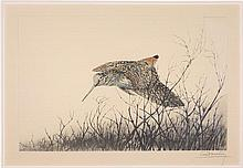 LEON DANCHIN, (French, 1887-1939), Woodcock in Flight, Etching, H 18 x W 26 inches.