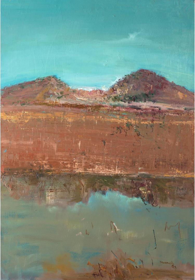 DAVID NASEBY(BORN 1937) Kimberley Reflection, 1998oil on canvassigned and dated lower right: Naseby / 98101 x 76 cmPROVENANCE Charles Hewitt Gallery