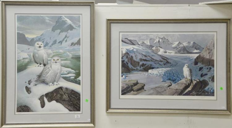 Two framed prints including Snow Owls numbered lower left: 8/950 and signed lower right in pencil Roger Tory Peterson (sight size 30...