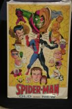 Spider-Man Old and New Poster
