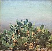 Pedro Moreno MEYERHOFF (1951) «Chumbera II