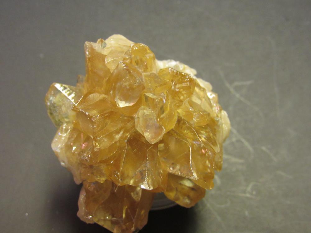 Golden Honey Calcite Crystal in Fossil Clam Shell on Matrix: Rucks