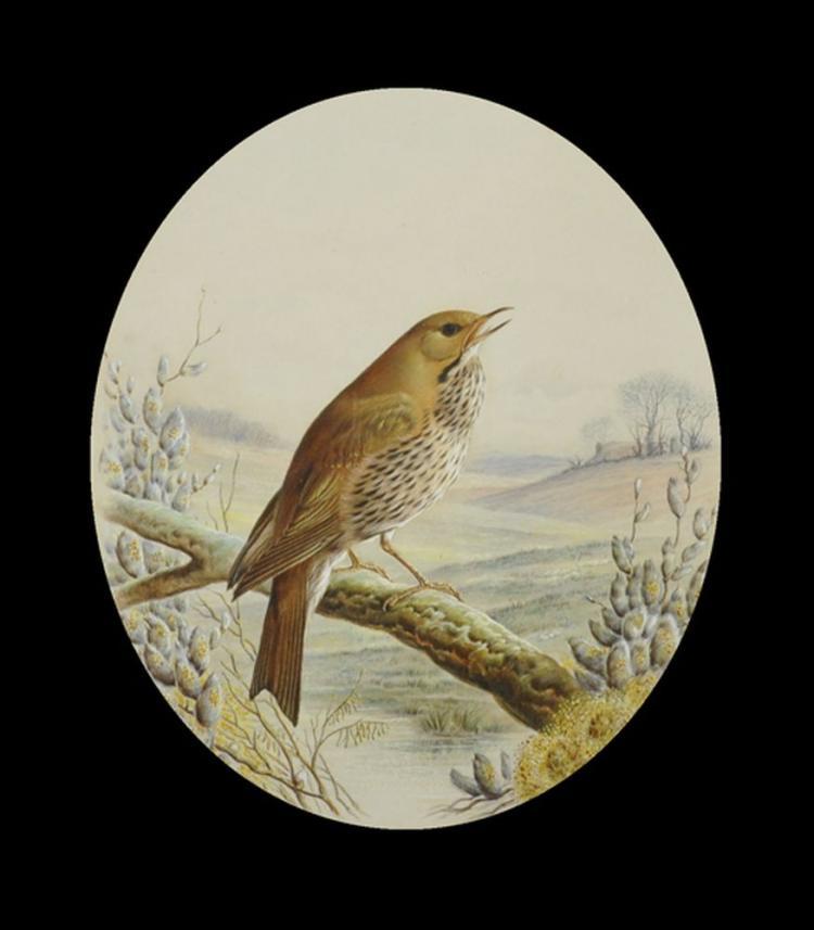 Harry Bright (1846-1895) British.