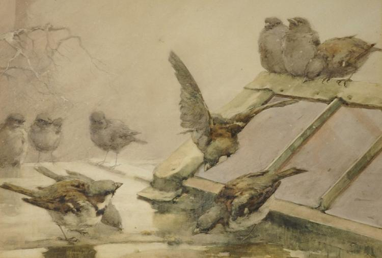 Attributed to Helen Sophie O'Hara (1846-1920) Irish. 'Sparrows in Winter' on a wet Roof, Watercolour, 12
