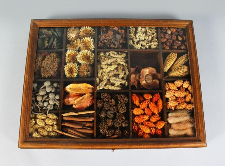 A GLASS CASE with folding top opening to reveal a collection of seeds.