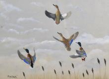 """David Knightley Wolfe-Murray (c. 1890-1950) British. """"Fish-hawk"""", Mallard Ducks in Flight, Gauche, Inscribed with Title, 10.25"""" x 14.5"""", and another by the same hand, two (2)."""