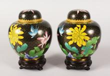 A PAIR OF JAPANESE CLOISONNE  ENAMEL GINGER JARS AND COVERS. <br>5.5ins high.