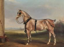 Circle of James Loder of Bath (1784-1854) British. A Horse by a Barn, Wearing a Harness, Oil on Canvas, 13.5